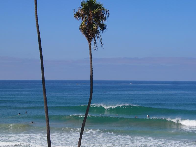 t street surf report